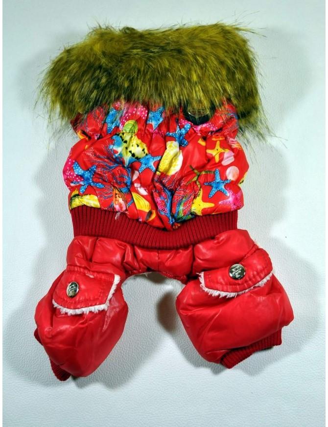 Dog winter coat - Red marine