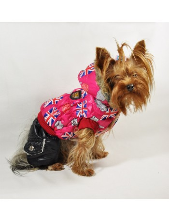 Dog winter coat - Fashion winter