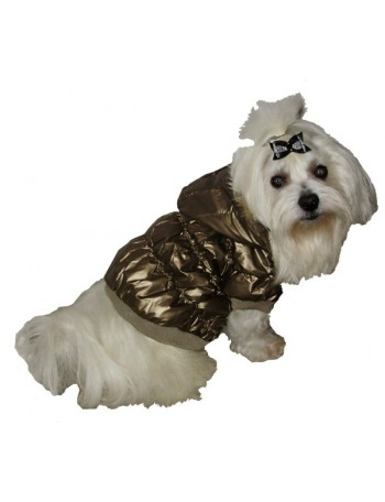 Dog winter jacket - Golden star