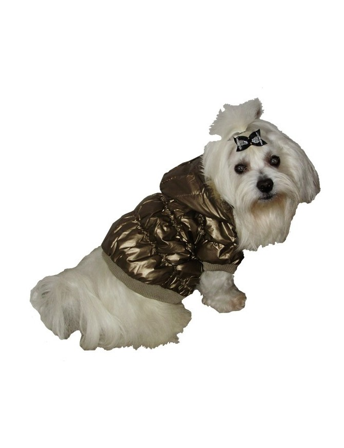 Dog coat - Golden star