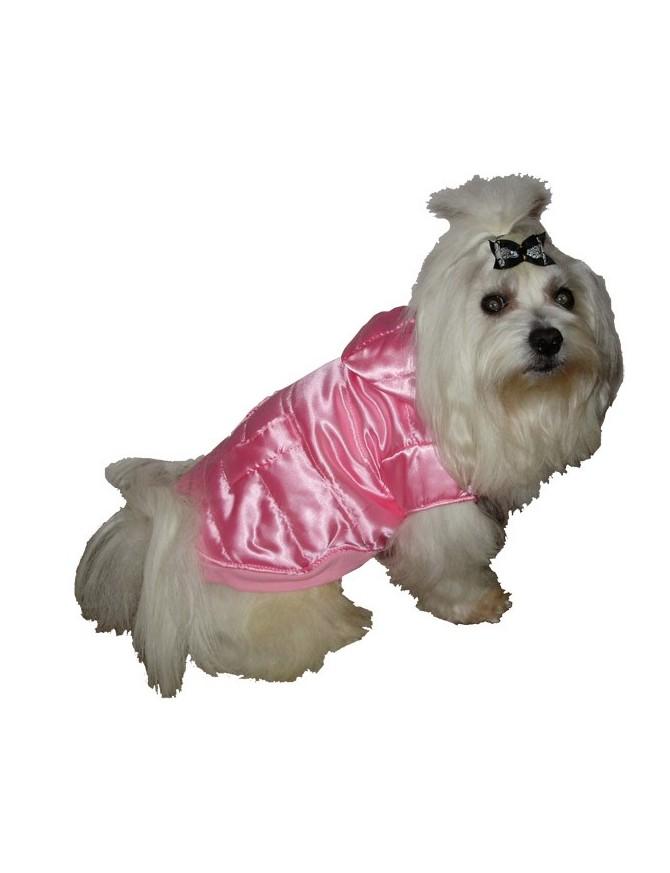 Pasja bundica - Pink beauty