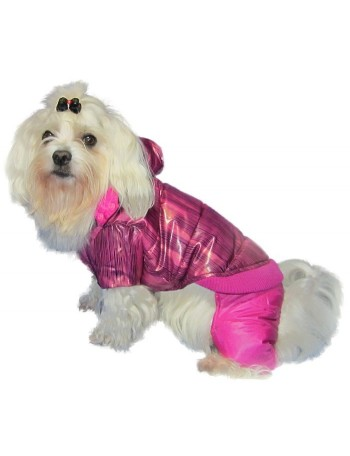 Dog coat on 4 legs - Purple rose
