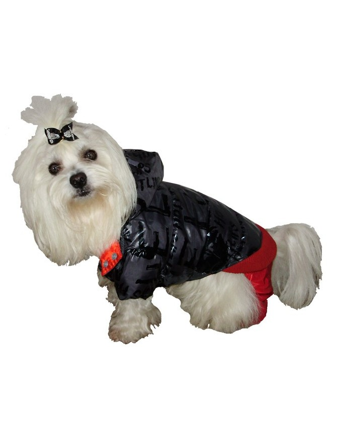Dog coat on 4 legs - Red hot lips