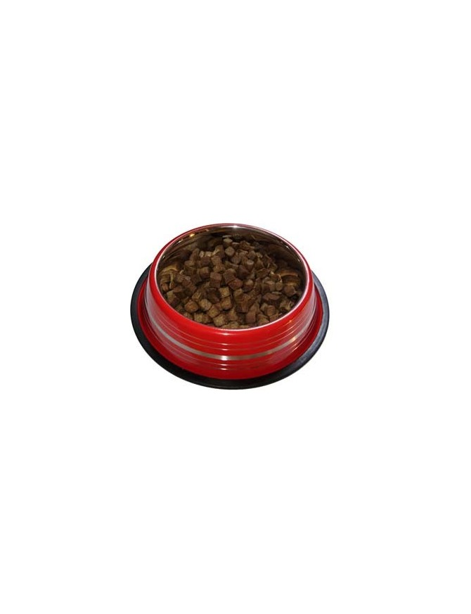 Dog bowl - Ruby